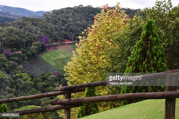 Valley and beautiful scenery in Pedra Azul