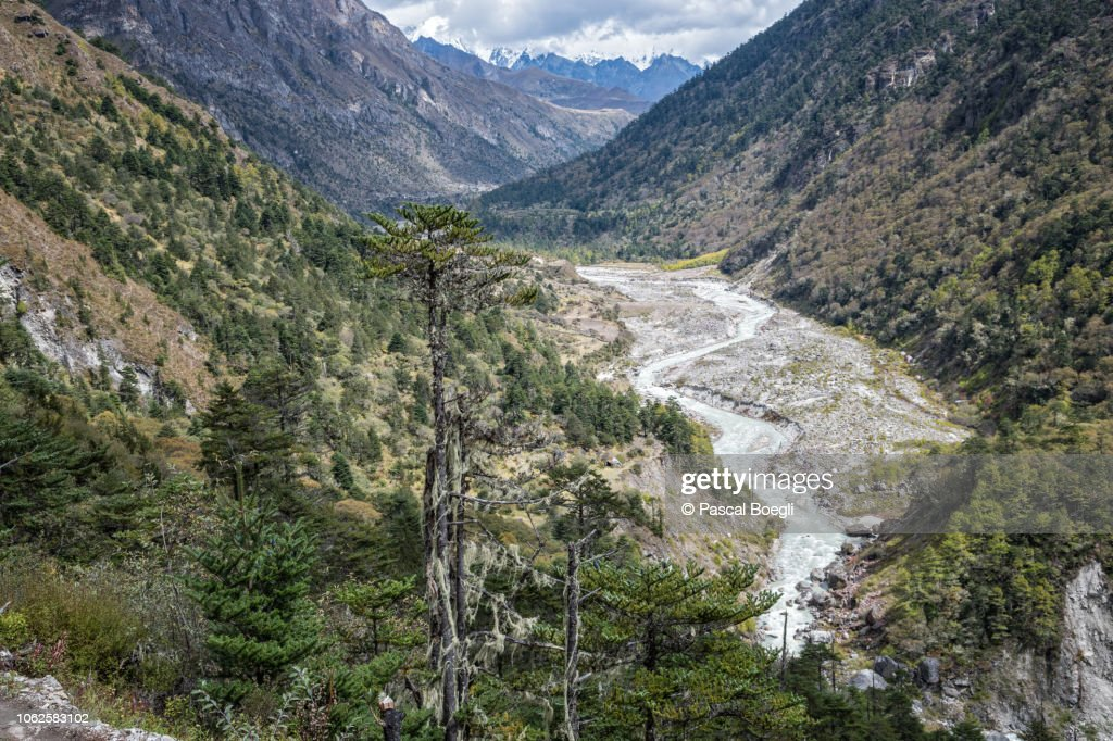 Valley and river on the way to Lhedi, Gasa District, Snowman Trek, Bhutan : Stock Photo