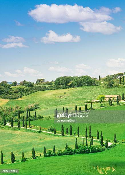 valley d'orcia, tuscany - val d'orcia stock pictures, royalty-free photos & images