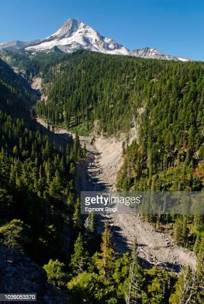 Valley, eastern side of the Mount Hood Volcano, Cloud Cap Road, Cascade Range, Oregon, USA