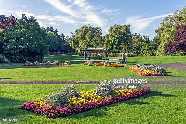 valley gardens, harrogate - harrogate stock pictures, royalty-free photos & images