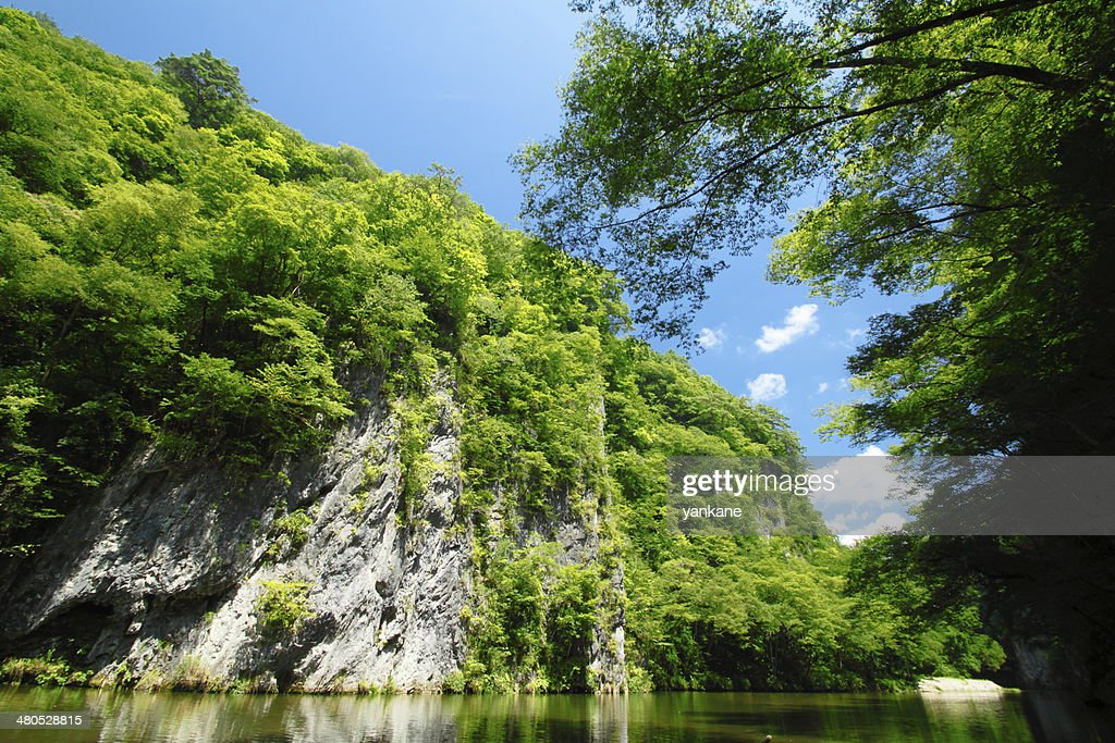 valley Geibi in Ichinoseki ,Iwate : Bildbanksbilder