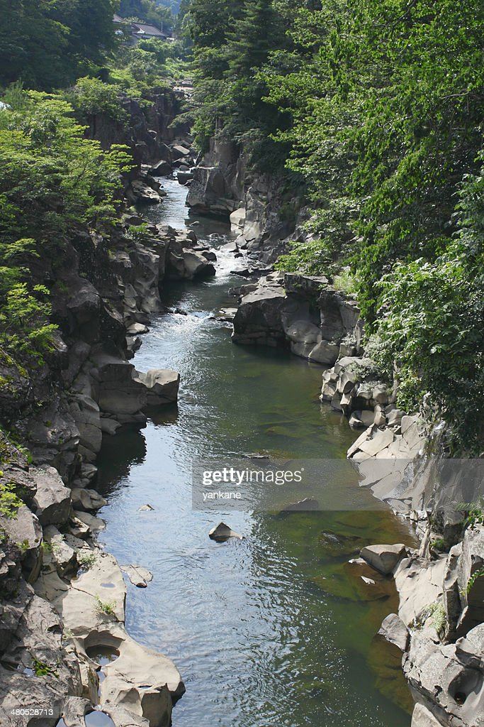 Valley  genbi in Iwate,Touhoku : Stock Photo
