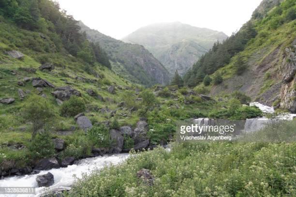 valley in the caucasus mountains, mountain stream, khevsureti, georgia - argenberg stock pictures, royalty-free photos & images