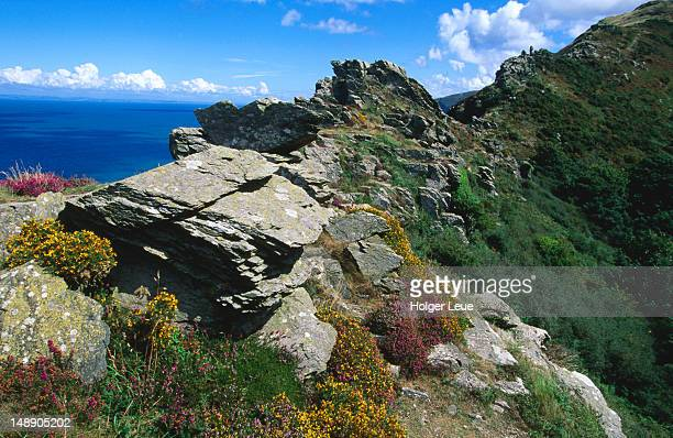 valley of rocks, near lynton. - lynton stock pictures, royalty-free photos & images