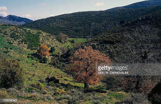 Valley of the Flumineddu River Gulf of Orosei and Gennargentu National Park Sardinia Italy