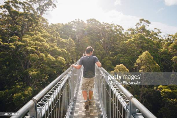 valley of the giants tourists - denmark stock pictures, royalty-free photos & images