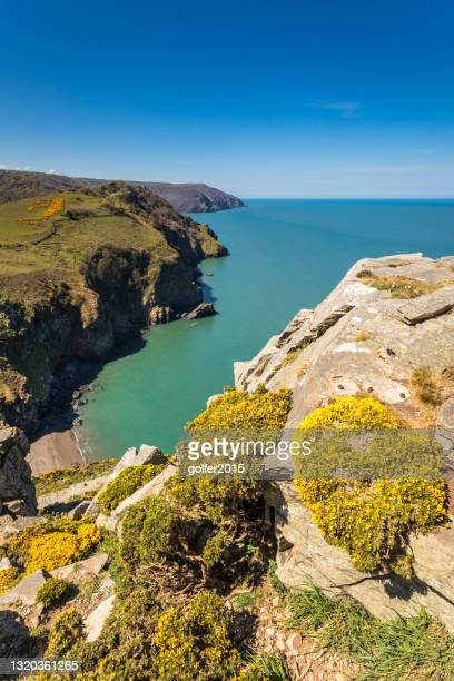 valley of the rocks - exmoor national park - england - coastline stock pictures, royalty-free photos & images