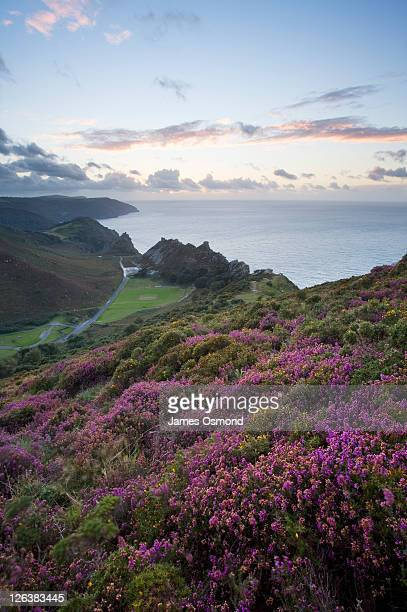 valley of the rocks from hollerday hill in lynton, exmoor national park. - lynton stock pictures, royalty-free photos & images