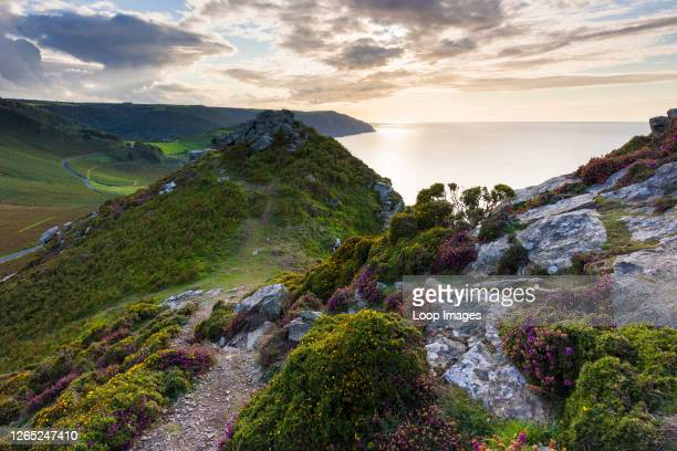 Valley of the Rocks in Exmoor National Park.