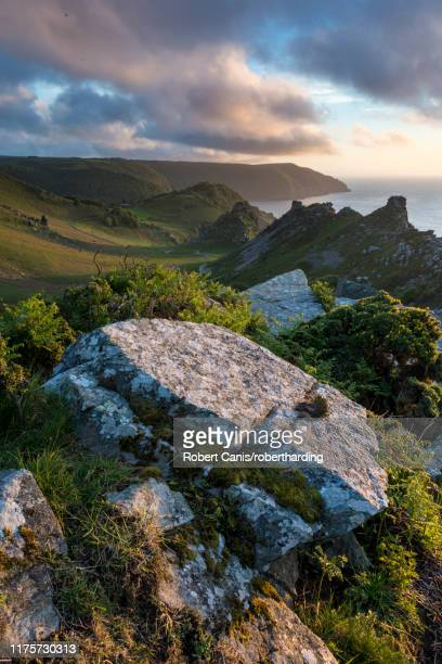 valley of the rocks in summer, exmoor, devon, england, united kingdom, europe - exmoor national park 個照片及圖片檔