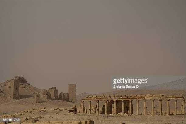 valley of tombs, palmyra 2008 - cité de l'architecture et du patrimoine photos et images de collection