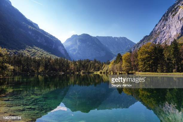 valley sides reflection in bluntausee lake, austria - pine woodland stock pictures, royalty-free photos & images