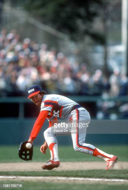 Vance Law of the Chicago White Sox reacts to a ground ball against the Baltimore Orioles during an Major League Baseball game circa 1984 at Memorial...