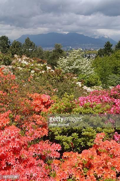 """Vancouver, Aussichtspunkt beim """"Luxusrestaurant """"Seasons"""" auf die Berge, Blumen, Kanada, Canada, Nordamerika, Reise, ,"""