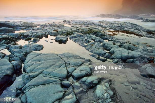 vancouver island british columbia - seascape stock pictures, royalty-free photos & images