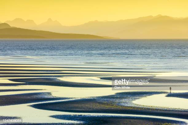 vancouver island british columbia - pacific ocean stock pictures, royalty-free photos & images