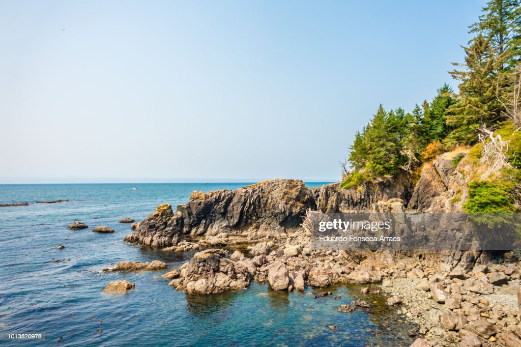 vancouver island coast and the pacific ocean ストックフォト getty