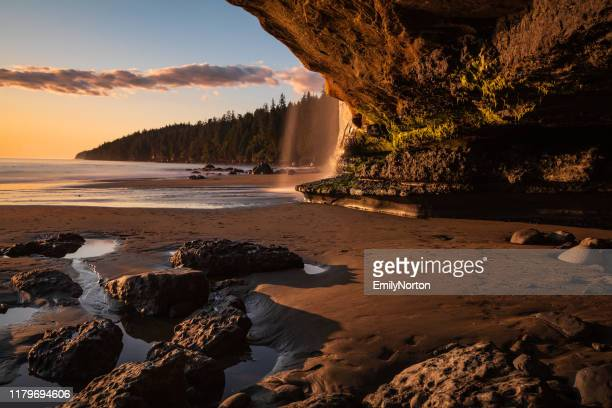 vancouver island - british columbia stock pictures, royalty-free photos & images