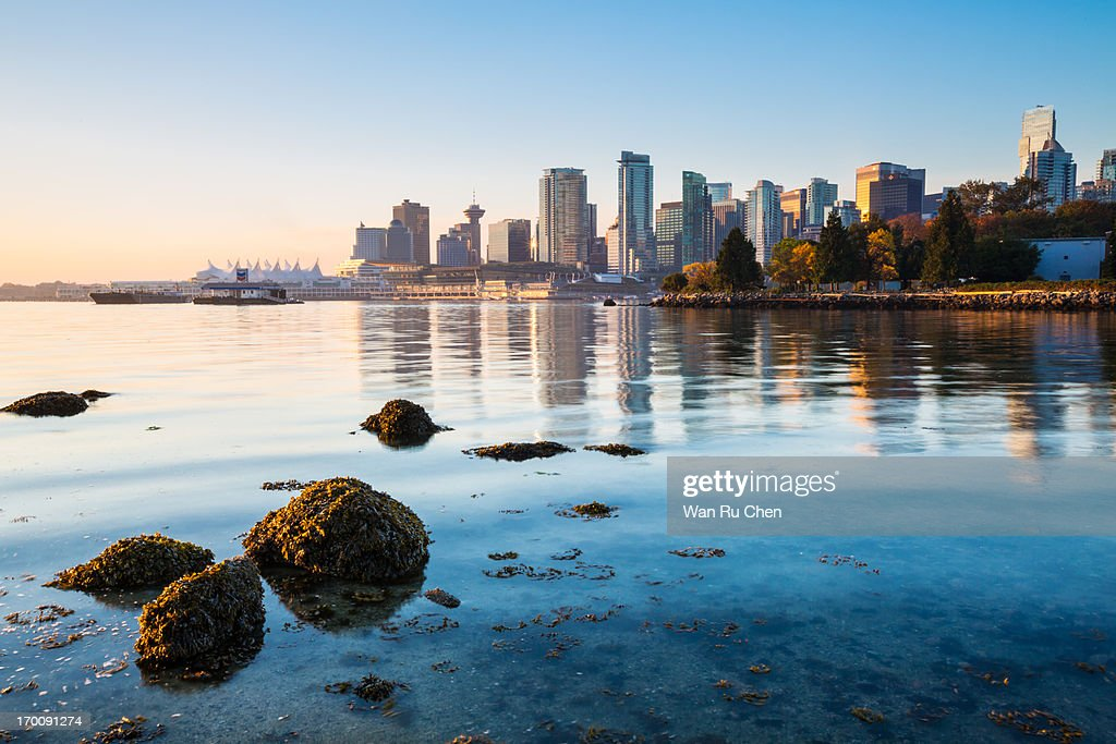 Vancouver skyline at Stanley Park : Stock Photo