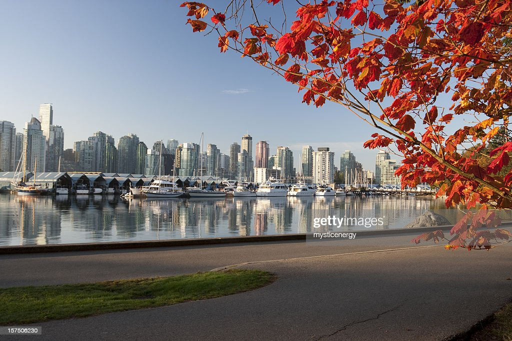 Vancouver Stanley Park : Stock Photo
