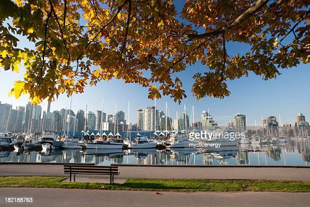 vancouver stanley park - stanley park stock photos and pictures