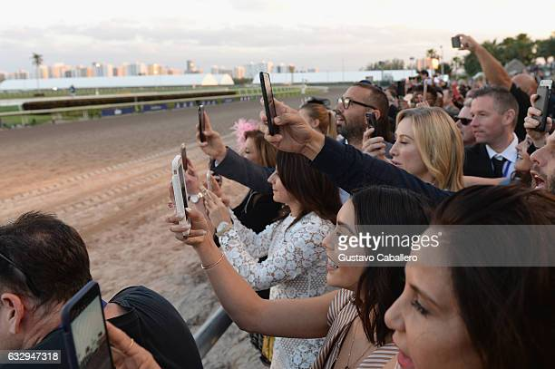 Vanessa Hudgens attends The Inaugural $12 Million Pegasus World Cup Invitational The World's Richest Thoroughbred Horse Race At Gulfstream Park at...
