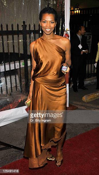 Vanessa Williams attends the 10th Annual Heroes in the Struggle Gala at the Avalon on December 1 2010 in Hollywood California