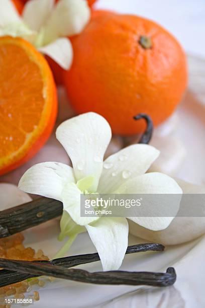 vanilla & citrus - vanilla stock pictures, royalty-free photos & images