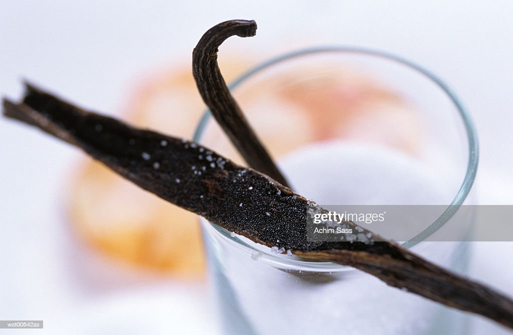 vanilla beans, close up : Foto de stock