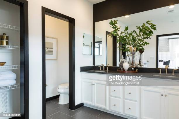 Vanity in the Master Bath in the Delanie model home at Loudon Valley The Carlisle on October 24 2018 in Ashburn Virginia