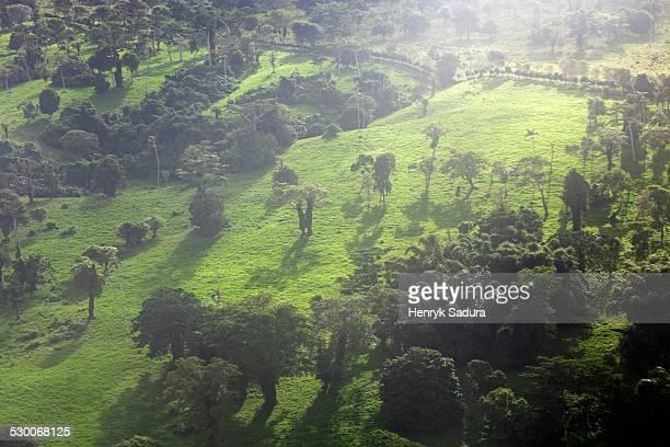 Vanuatu, Aerial view of Efate Island