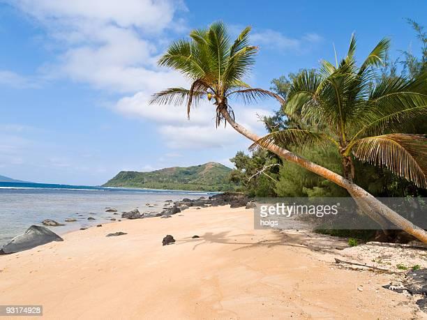 vanuatu beach scene - vanuatu stock photos and pictures