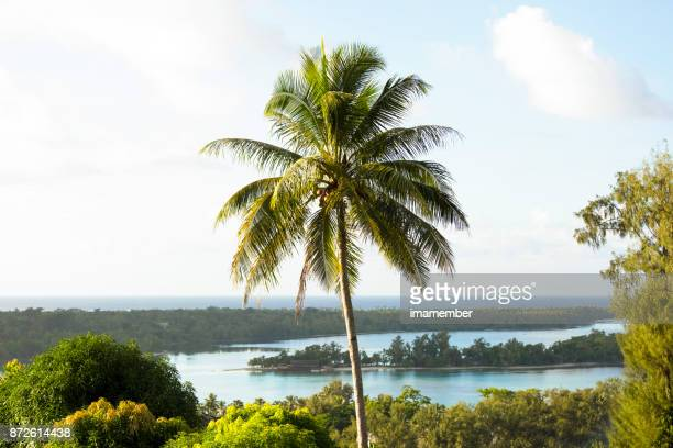 Vanuatu, beautiful islands, nature background with copy space
