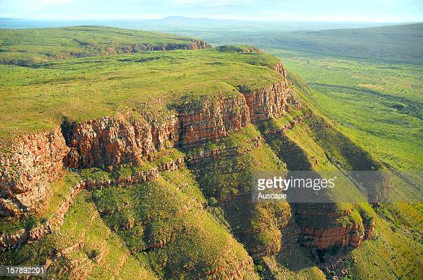 Varied topography with diverse habitats in valleys and escarpments of tropical savannah woodland and riparian forests with spinifex hummock grassland...