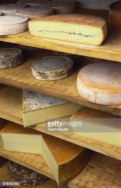 Variety of Cheeses in a Cheese Shop