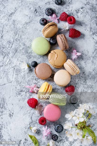 Variety of colorful french sweet dessert macaron macaroons with different fillings served with spring flowers and berries over gray texture...