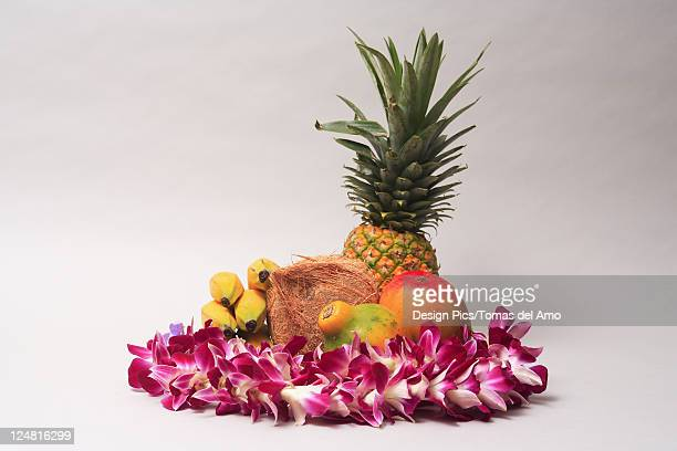 Variety of exotic tropical fruits with orchid lei on a white background.