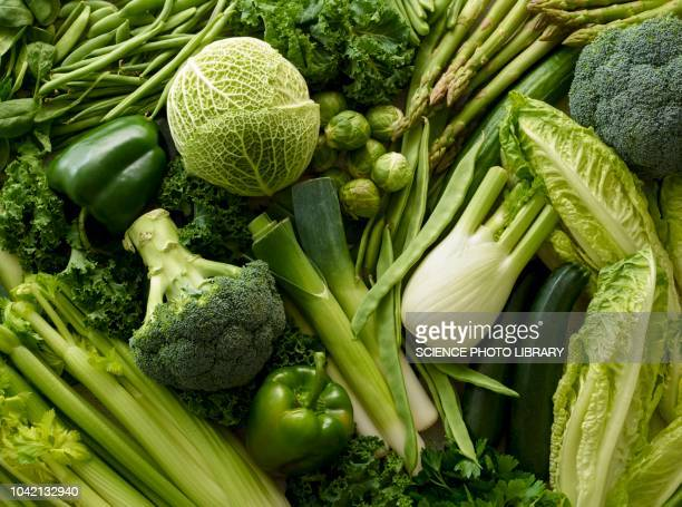 variety of fresh green vegetables - freshness stockfoto's en -beelden