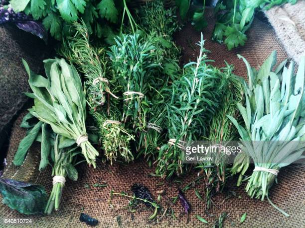 Variety of herbs