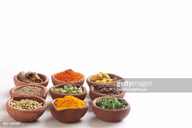 Variety of Indian spices in oil lamps over white background