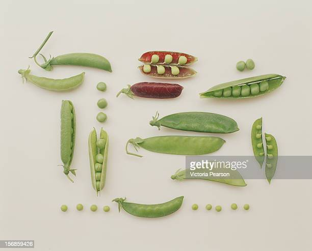 A variety of peas.