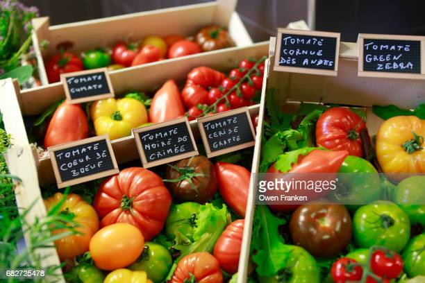 variety of tomatoes of all many colors and types