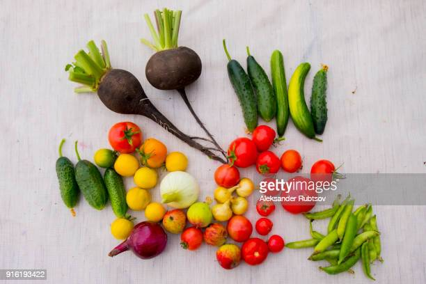 Variety of vegetables on table