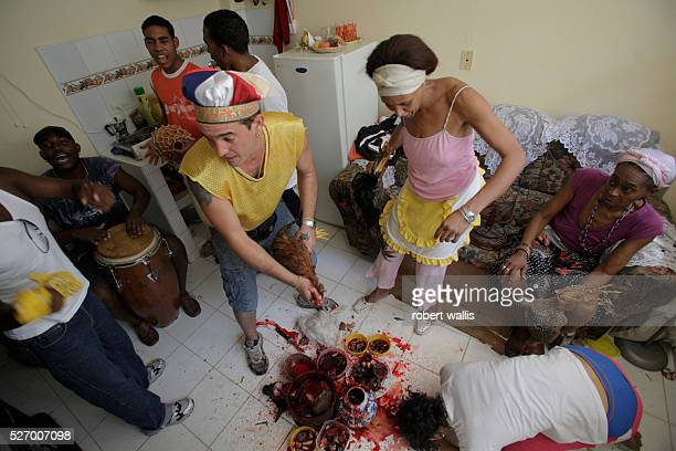 Various animals are sacrificed at in a Santeria ceremony in someones apartment to propitiate the resident's personal Orisha The man in the tricolor...