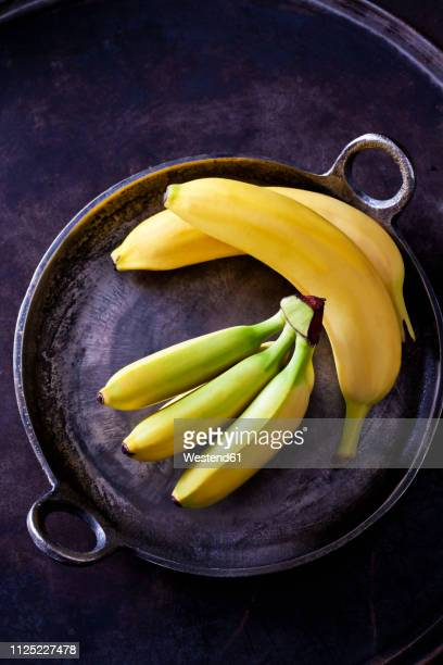 various bananas - banana tree stock pictures, royalty-free photos & images