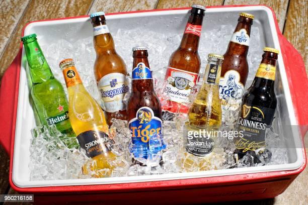 various beer bottles - ビール瓶 ストックフォトと画像