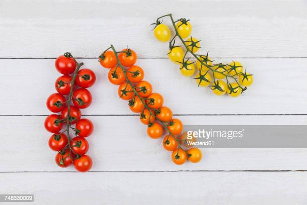 Various bunch tomatoes