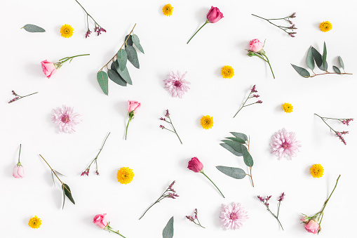 Various colorful flowers on white background. Flat lay, top view 926985624