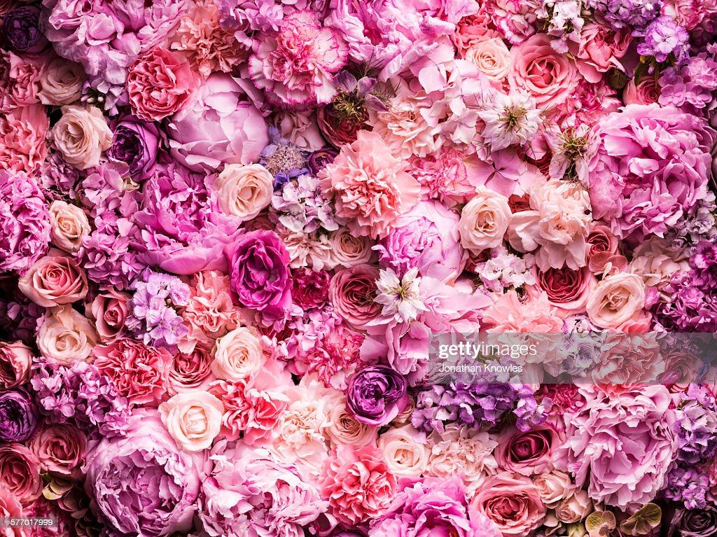 Various cut flowers, detail : Foto de stock